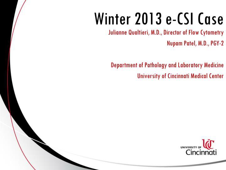 winter 2013 e csi case