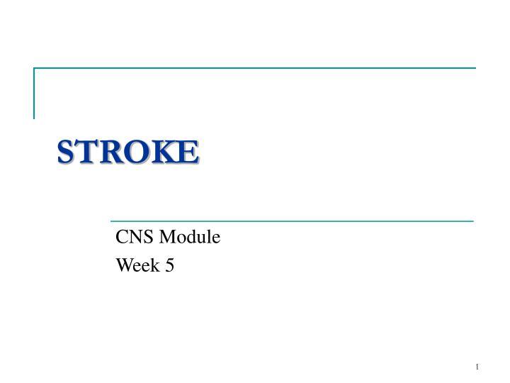 stroke n.
