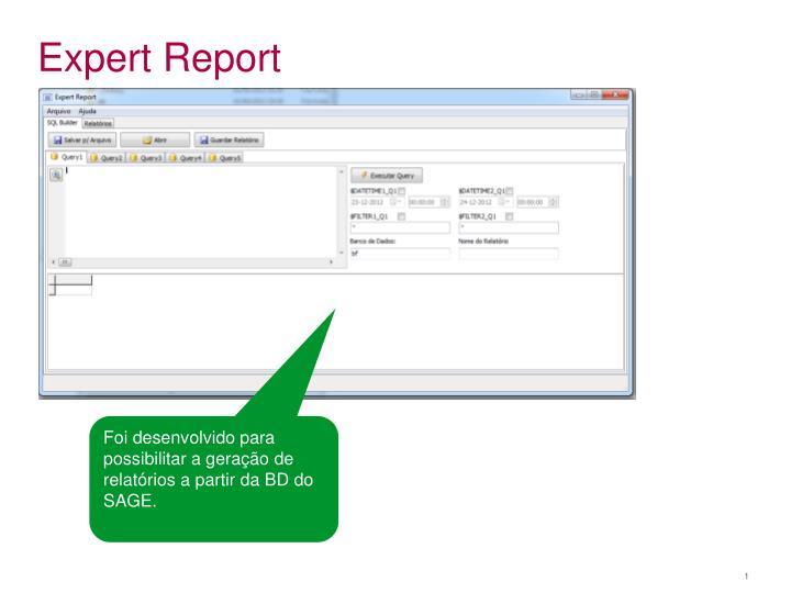 expert report n.