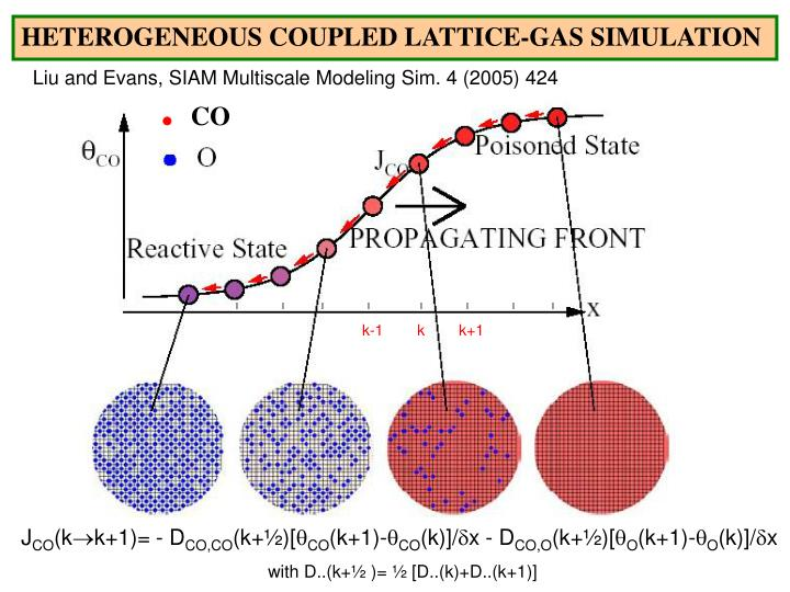 HETEROGENEOUS COUPLED LATTICE-GAS SIMULATION
