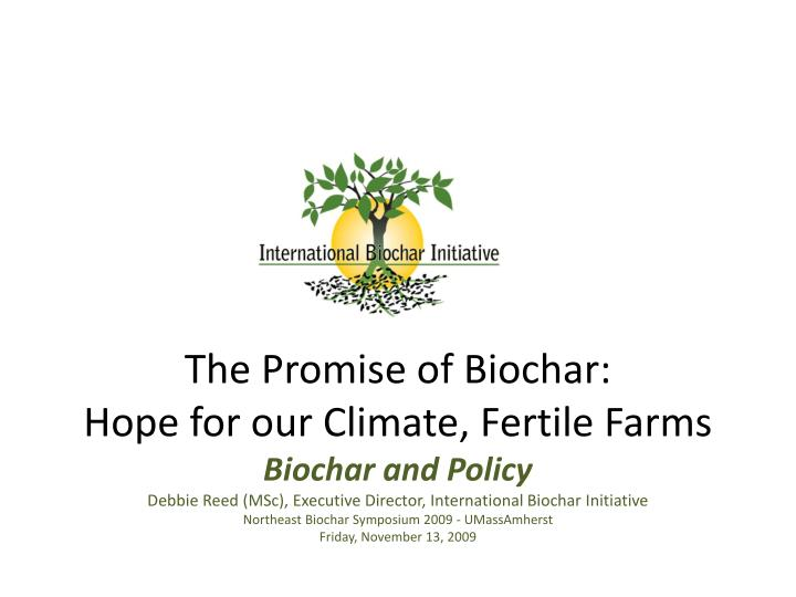 the promise of biochar hope for our climate fertile farms n.