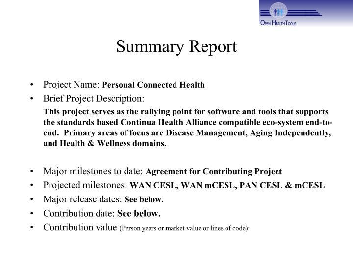 summary report n.