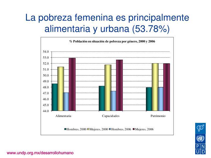 La pobreza femenina es principalmente alimentaria y urbana (53.78%)