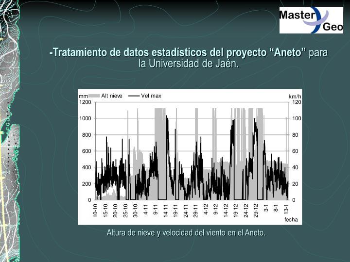 """-Tratamiento de datos estadísticos del proyecto """"Aneto"""""""