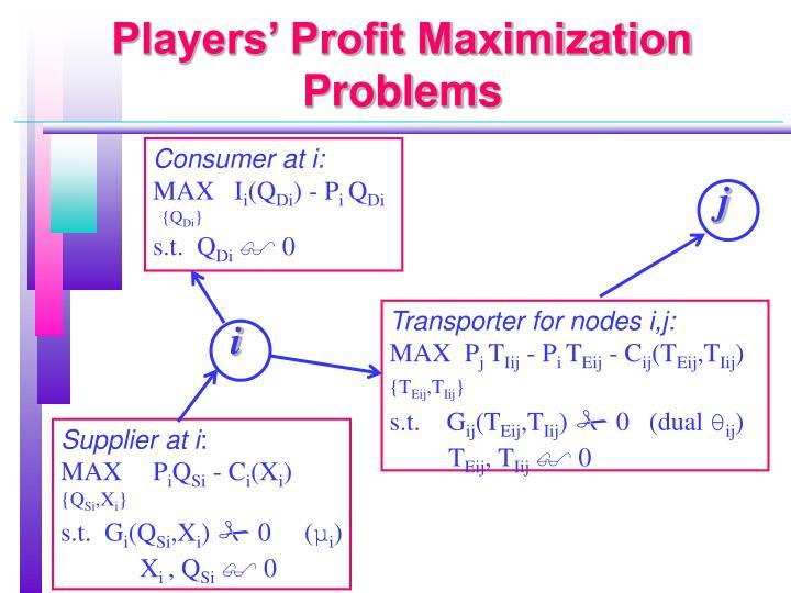 Players' Profit Maximization Problems