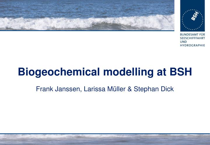 biogeochemical modelling at bsh n.