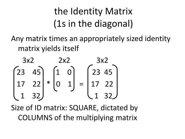 the Identity Matrix
