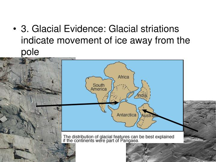 3. Glacial Evidence: Glacial striations indicate movement of ice away from the pole