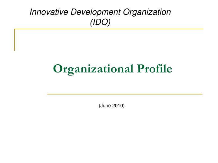 organizational profile n.