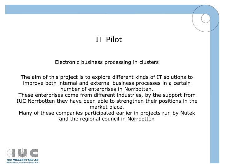 IT Pilot