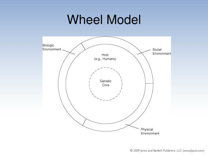 wheel of causation model