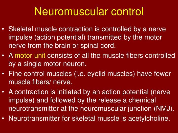 Neuromuscular control
