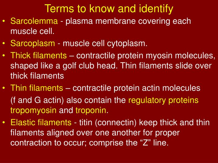 Terms to know and identify