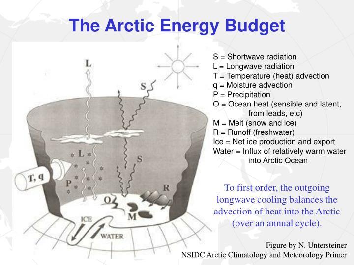 The arctic energy budget