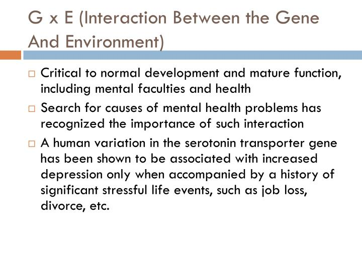 G x E (Interaction Between the Gene And Environment)