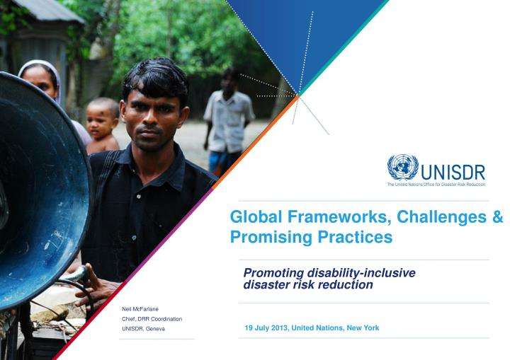 promoting disability inclusive disaster risk reduction n.