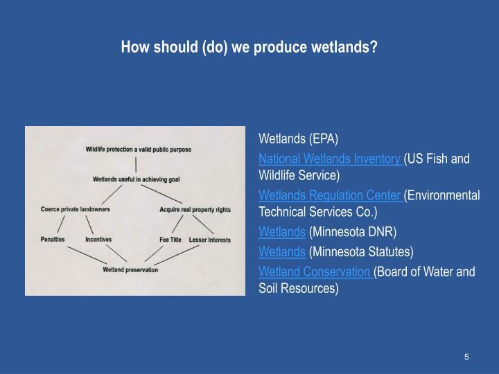 How should (do) we produce wetlands?