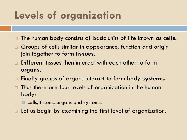 Levels of organization1