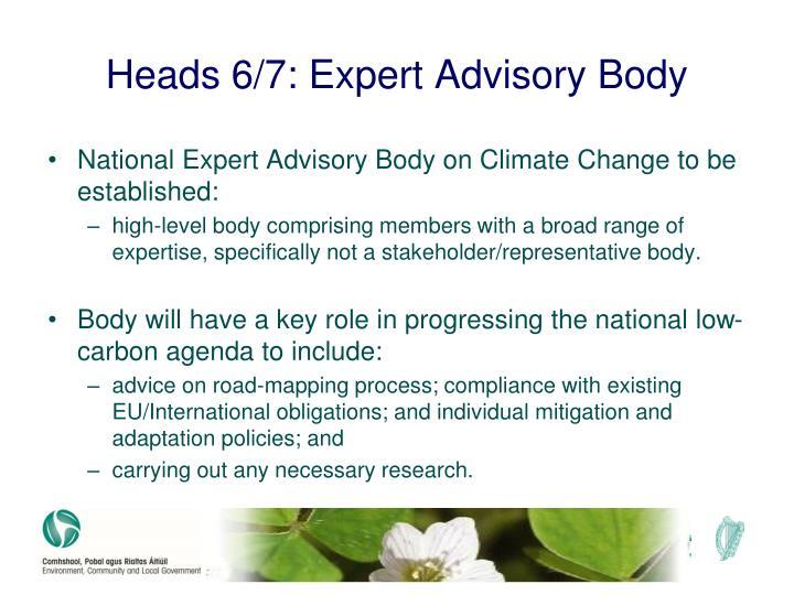 Heads 6/7: Expert Advisory Body