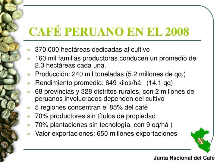 CAFÉ PERUANO EN EL 2008