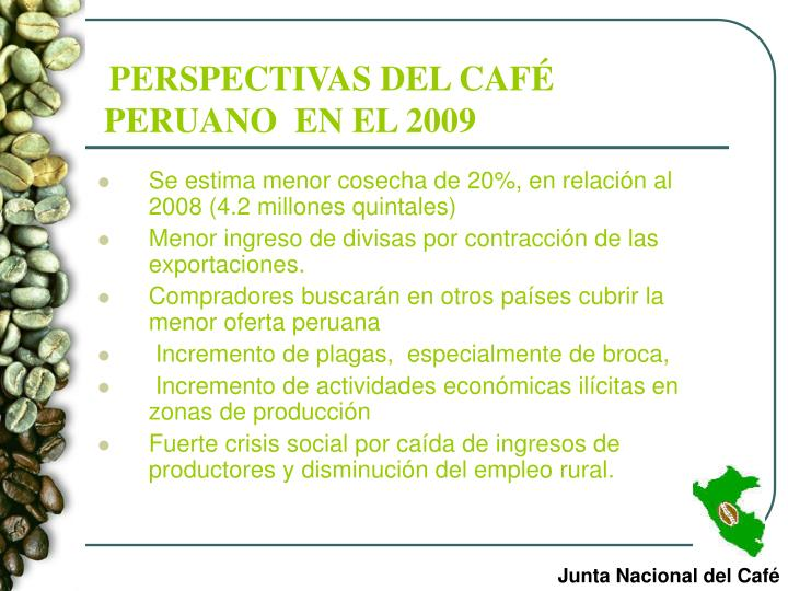 PERSPECTIVAS DEL CAFÉ PERUANO  EN EL 2009