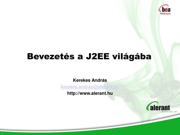 bevezet s a j2ee vil g ba n.