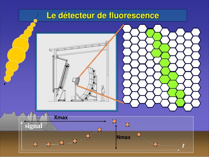 Le détecteur de fluorescence