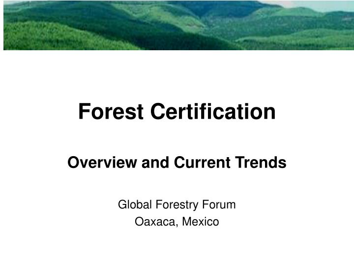 forest certification n.