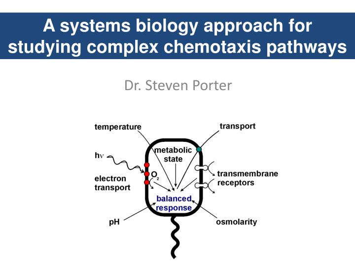 A systems biology approach for studying complex chemotaxis pathways