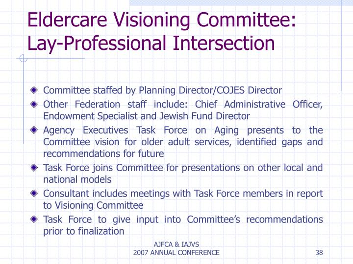 Eldercare Visioning Committee: Lay-Professional Intersection