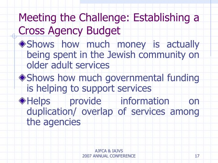 Meeting the Challenge: Establishing a Cross Agency Budget