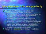 gene duplication in the hox gene family1