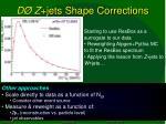 d z jets shape corrections
