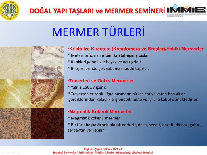 MERMER TÜRLERİ