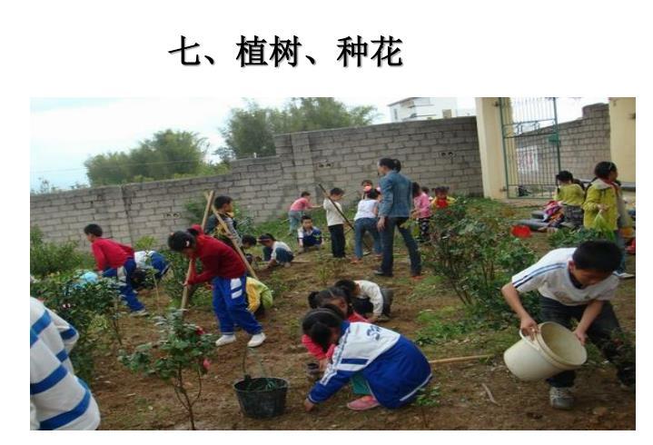七、植树、种花