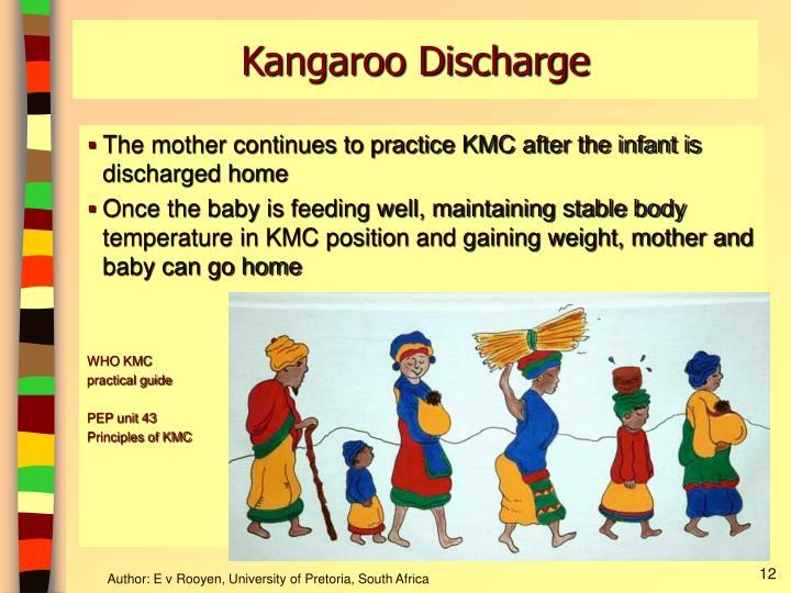 Kangaroo Discharge