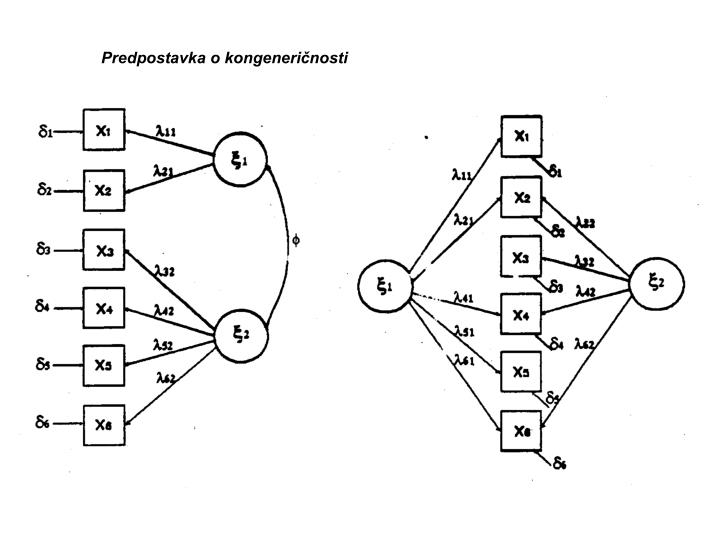 Predpostavka o kongeneričnosti