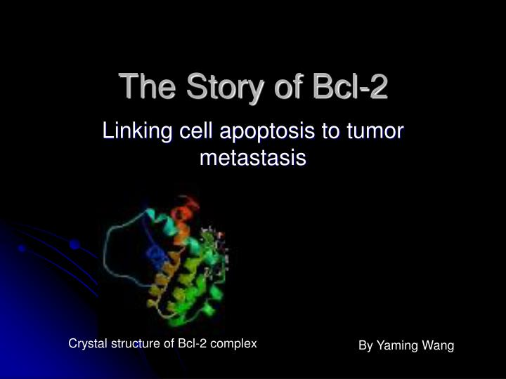 the story of bcl 2 n.