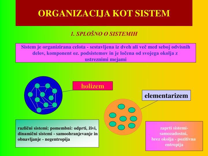 organizacija kot sistem n.
