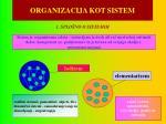 organizacija kot sistem