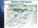 qualitative cba transects