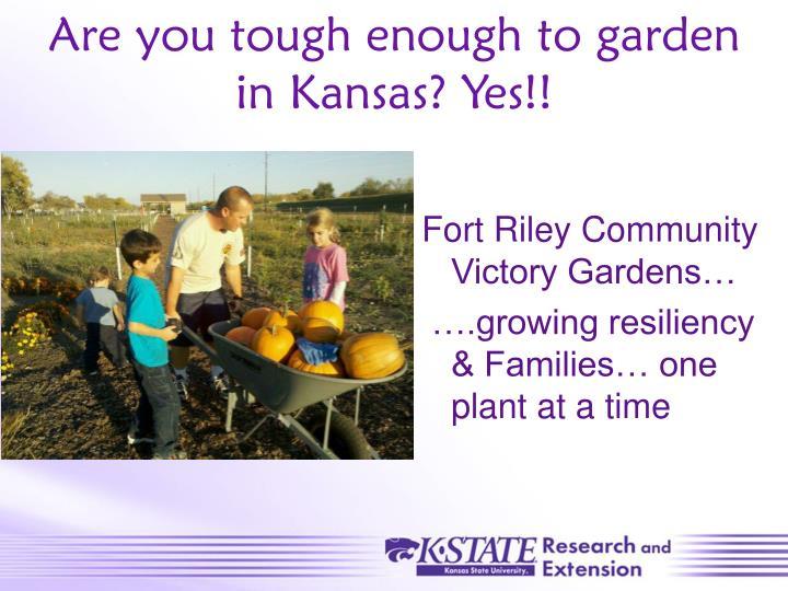Are you tough enough to garden in Kansas? Yes!!