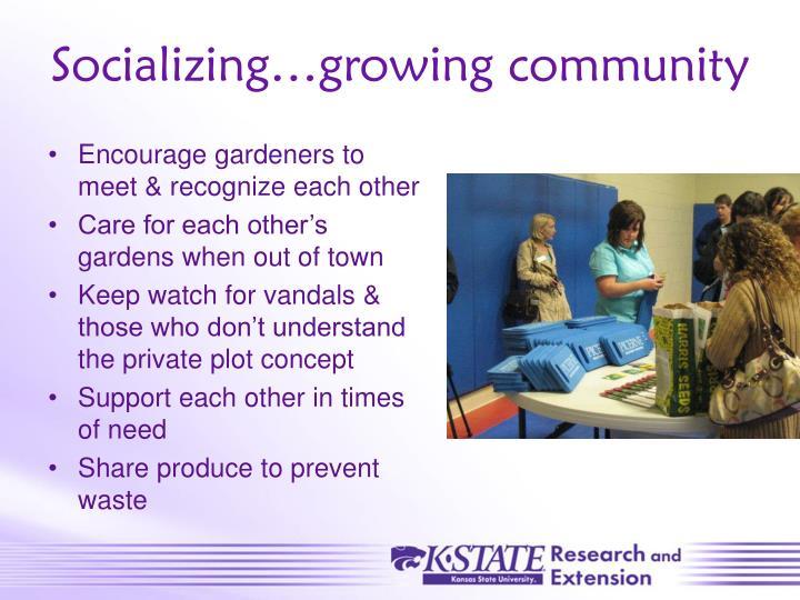 Socializing…growing community