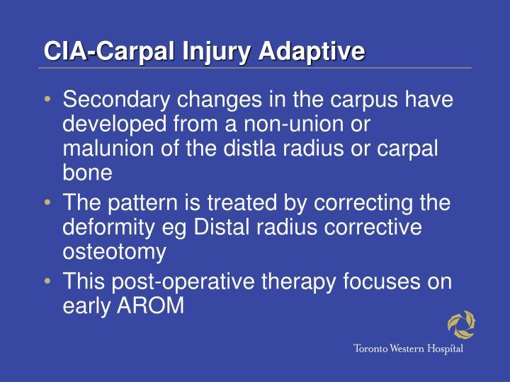 CIA-Carpal Injury Adaptive