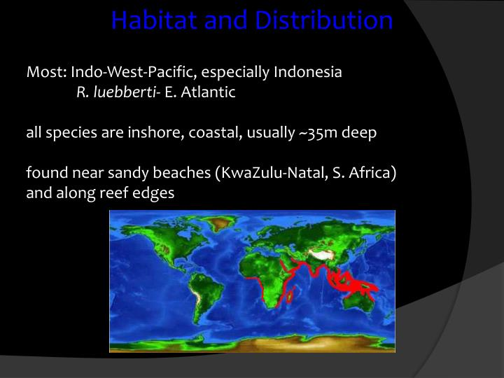 Habitat and Distribution