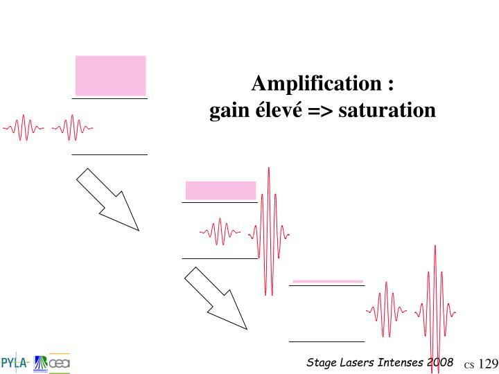 Amplification :