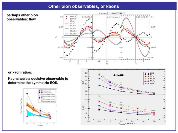 Other pion observables, or kaons