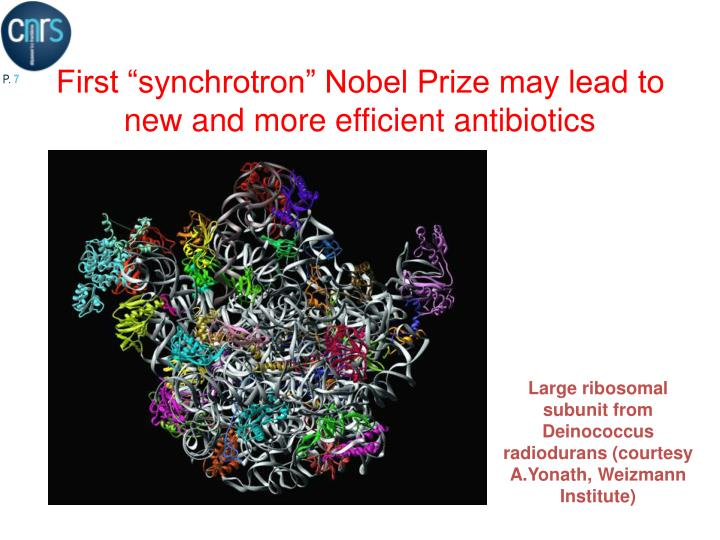 Large ribosomal subunit from Deinococcus radiodurans (courtesy A.Yonath, Weizmann Institute)