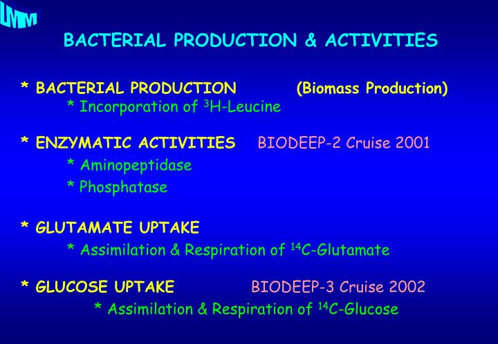 * BACTERIAL PRODUCTION