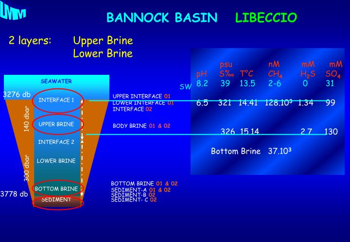 2 layers:Upper Brine